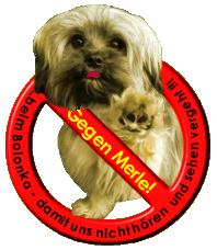 No Merle-Logo